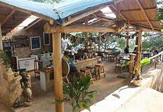 Malawi Fungi Farm
